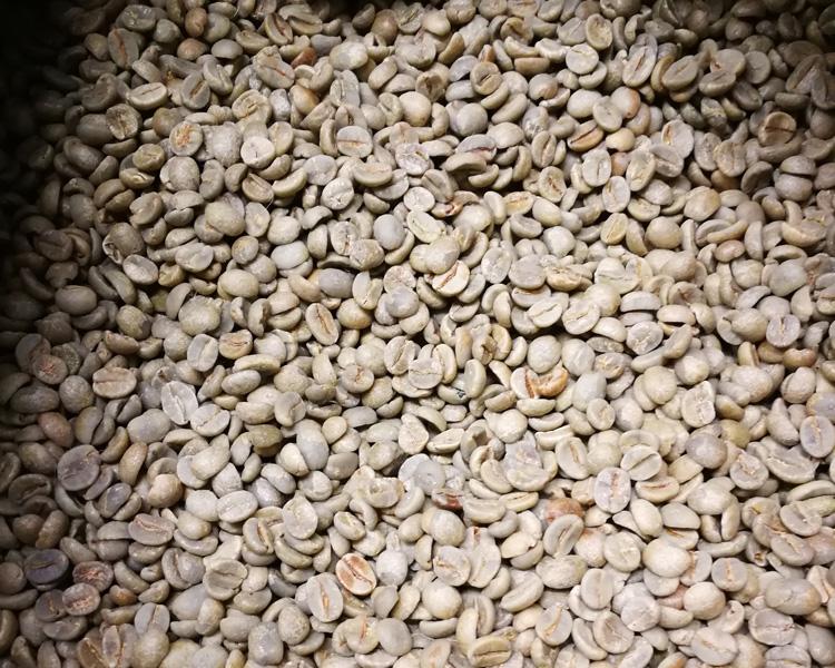 Caffè caffè verde
