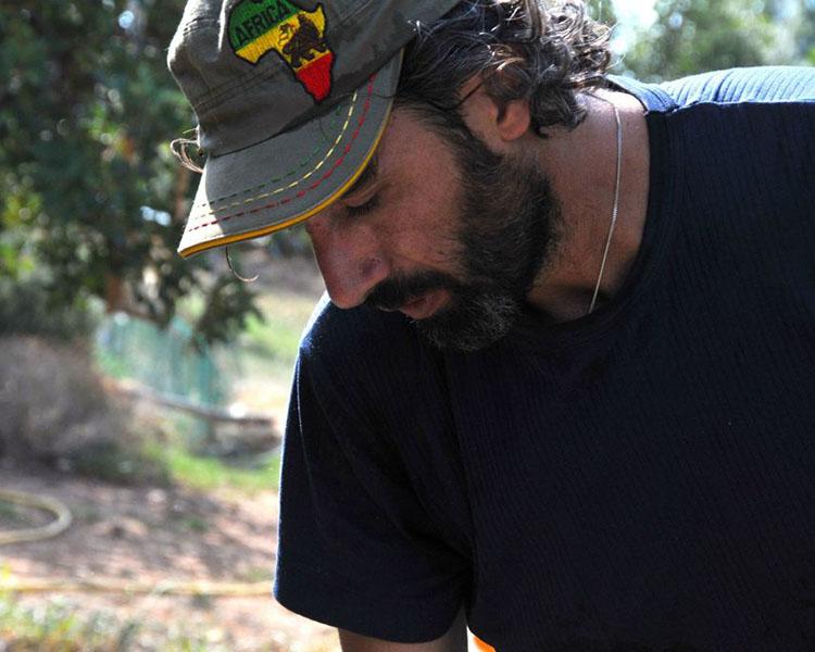 Coltivare il caffè in Sicilia, il racconto di Adriano Cafiso